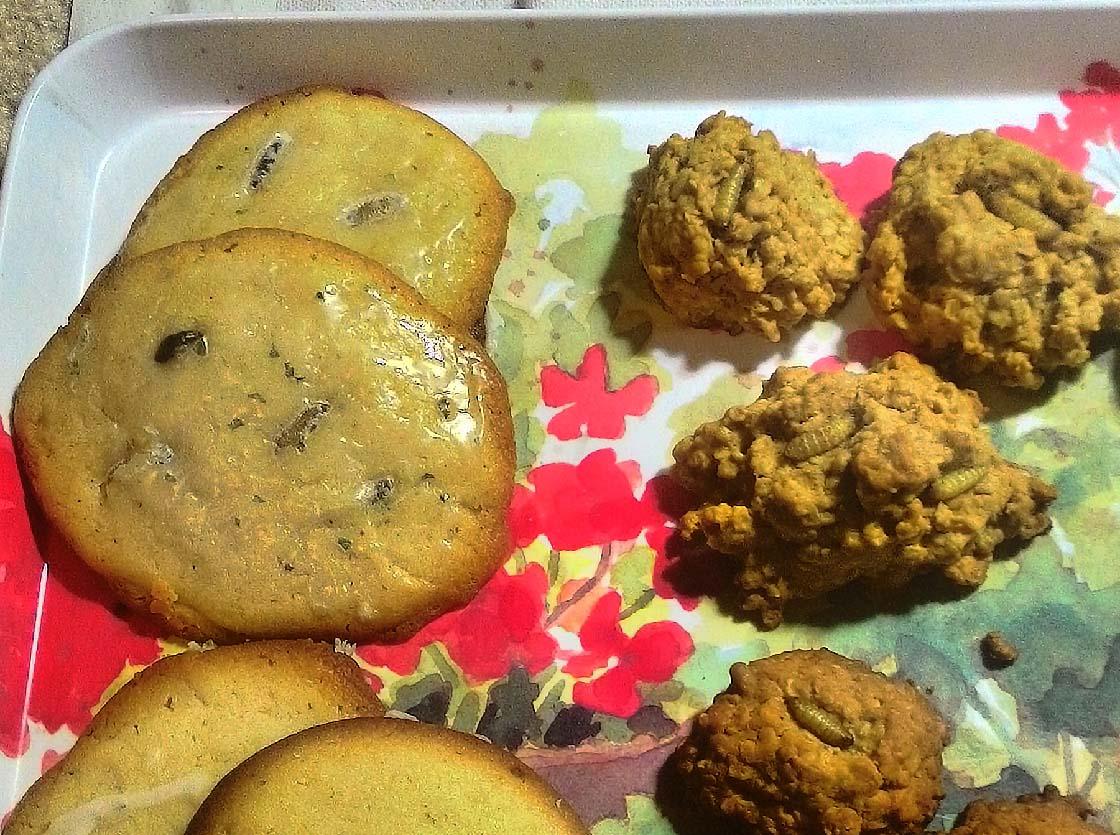 Oatmeal waxworm cookies