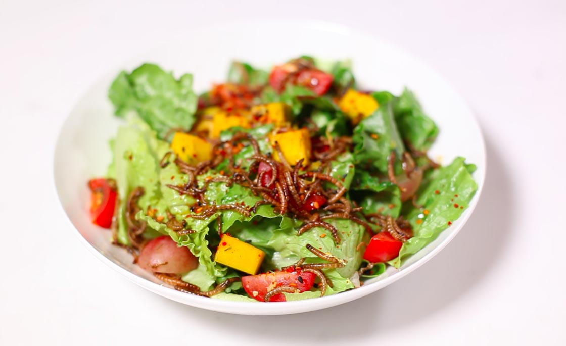Autumn salad with mealworms