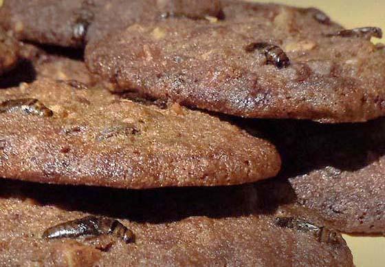 cricket_cookies_cropped.jpg