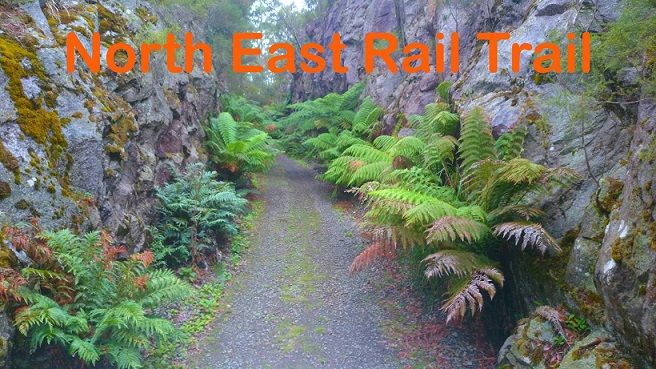 NE_rail_trail_FB_smaller.jpg