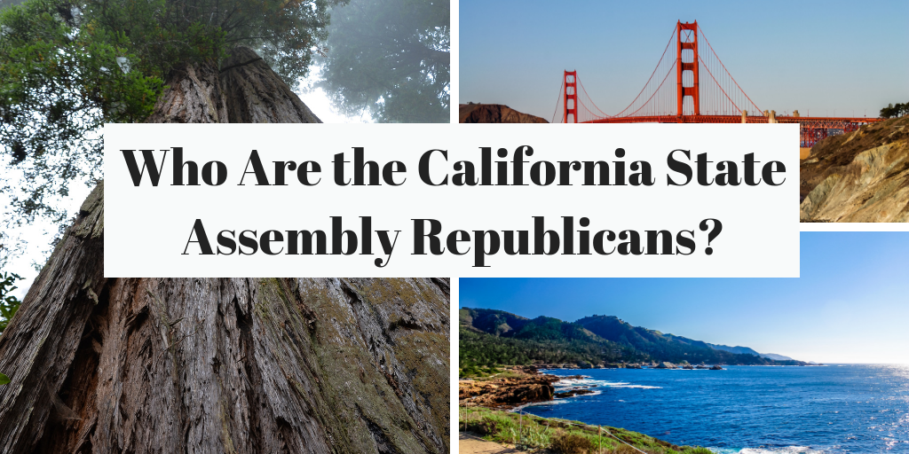 California State Assembly Republicans