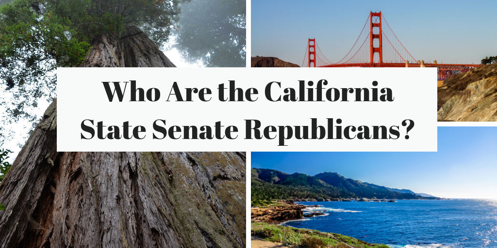 California State Senators