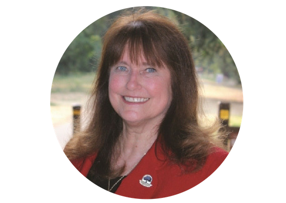 Karen Stepper for Danville Town Council