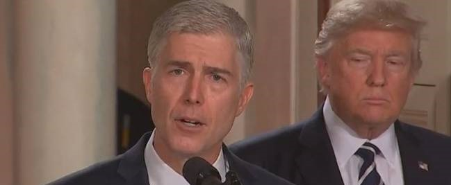 gorsuch_display_largeE.jpg