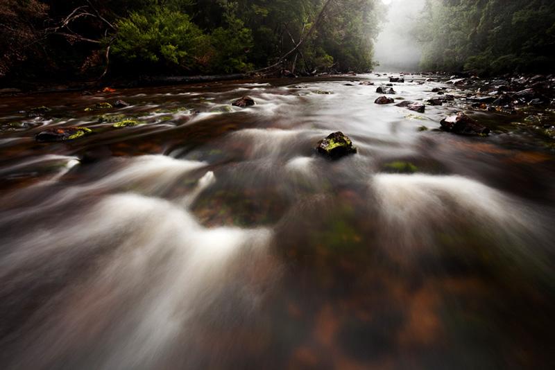 Misty-Donaldson-River_MGay_TIM-2017.jpg