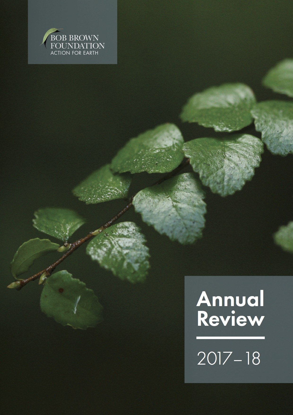 BBF_Design_Org_2018_AnnualReview_Dig_FrontCover_Sml.jpg