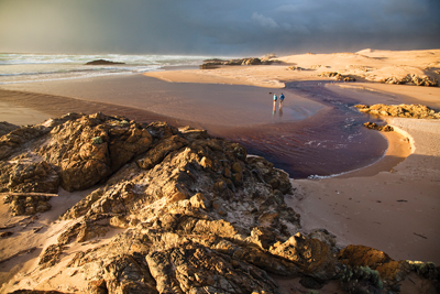 Tarkine-Coast_MG_5830-Edit-400pxwide.jpg