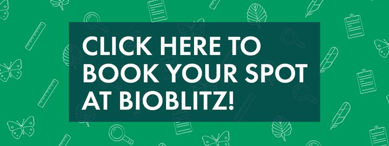 BBF_BioBlitz_2017_Materials_NBBanner_02.0.jpg