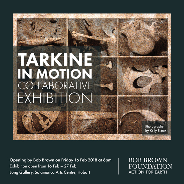 BBF_Design_Tarkine_18_TiMExhibit_Materials_Social_02.NB.jpg