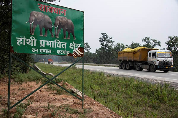 "A coal truck passes a sign on the highway through the Hasdeo Arand forest which warns to beware of elephants. Elephants will have more to worry about than traffic as their homeland forest is destroyed around them by new open cast coal mines. (Translation - ""Warning - Elephant Roaming Area, Forest Department, Katghora"") Photo courtesy Brian Cassey www.briancasseyphotographer.com"