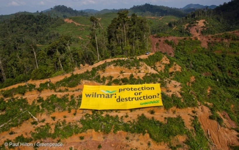 Greenpeace activists unfurl a banner challenging Wilmar International to choose forest protection over forest destruction. Wilmar is a major supplier of Adani Wilmar's Indian operations. Photo Paul Hilton / Greenpeace.