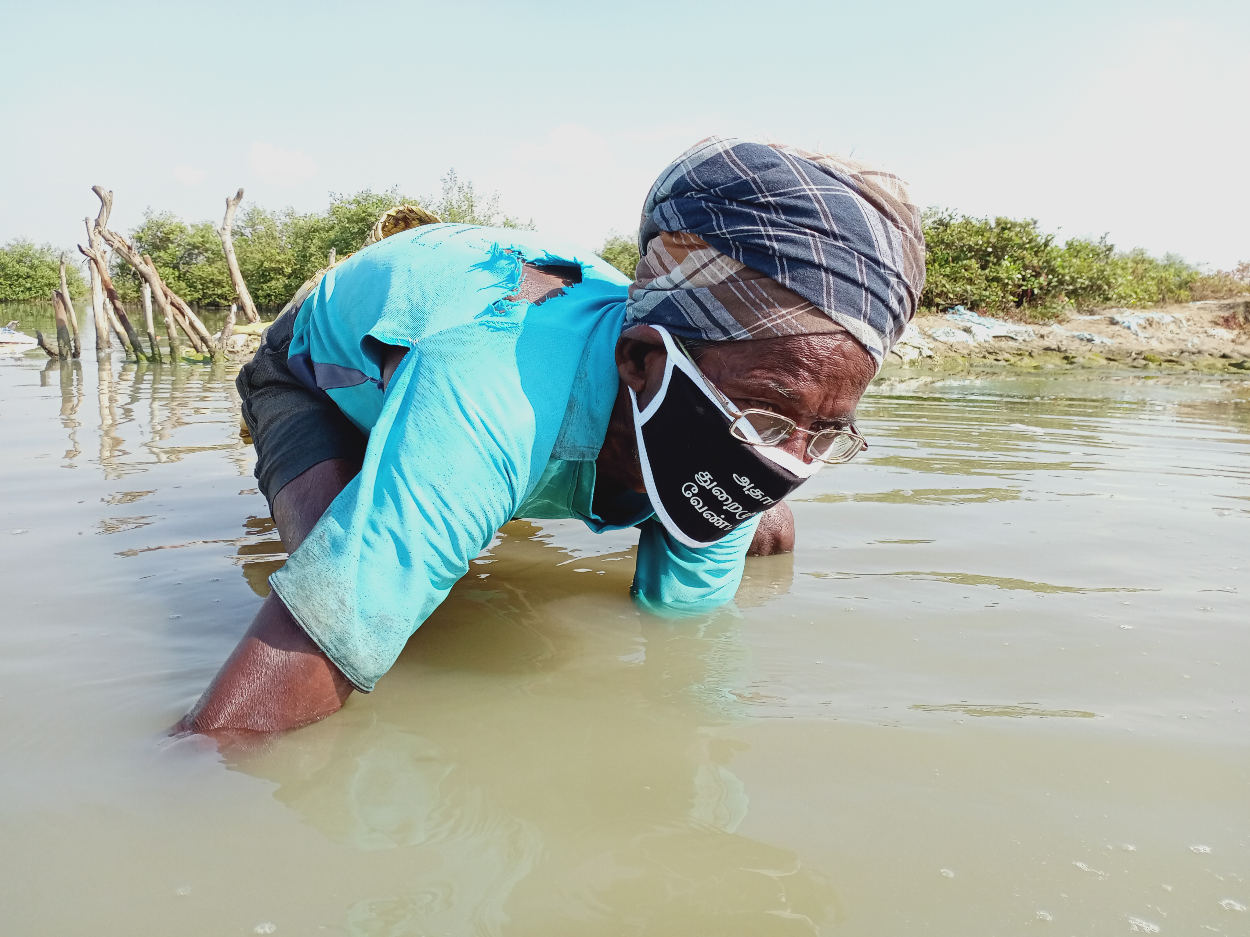 10. The lagoon and backwaters have something for everyone. An elderly fisher from Sengenimedu crouches in the water and uses his bare hands to pick prawns. A day's work will fetch him anywhere from Rs. 250 to Rs. 1000 (AUD $5-10). It is estimated that handpicking is the mainstay for about 2000 people, mostly women from historically marginalised communities like dalits and the Irular tribe.