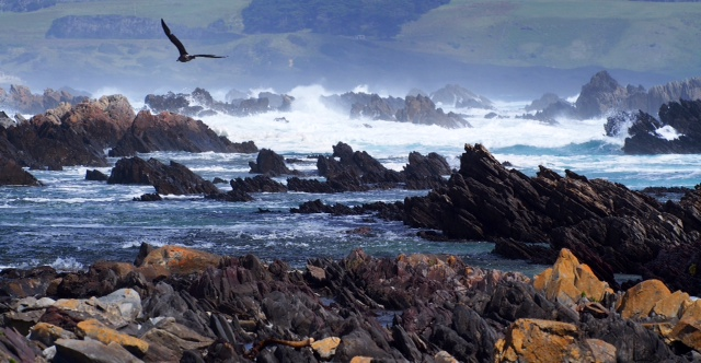 Cataraqui coast King Island
