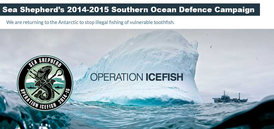 Sea Shepherd Operation Icefish