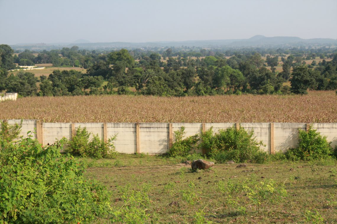 Inside Adani's Pench boundary wall - fallow land. Outside the wall - thriving crops. Image Ankit A.