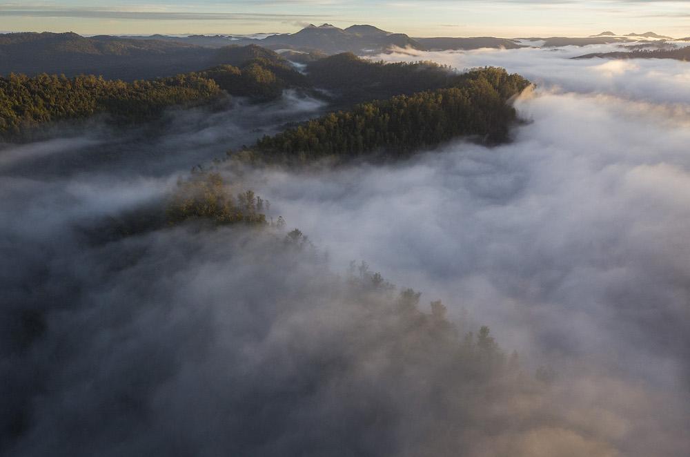 5_-_Huskisson_River_Wilderness_2_-_Rob_Blakers_-_small.jpg
