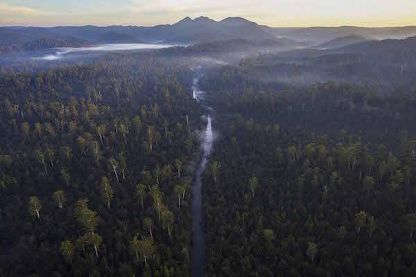 3_-_Huskisson_River_Wilderness_-_Rob_Blakers_-_small.jpg