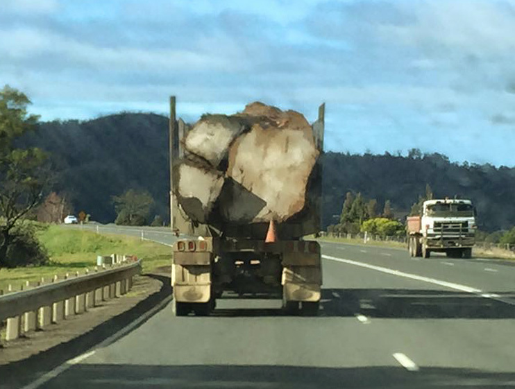 huonville-log-truck-August-2015-_2-small.jpg