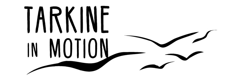 TarkineInMotion_logo-small.jpg