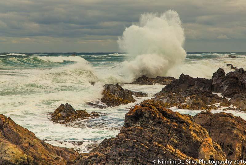 Nilmini-De-Silva-2016_03_27_Couta_Rocks-2.jpg