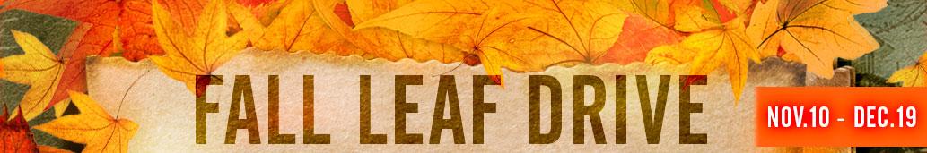 subpage-leaves.jpg