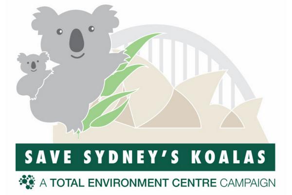 koala_logo.png