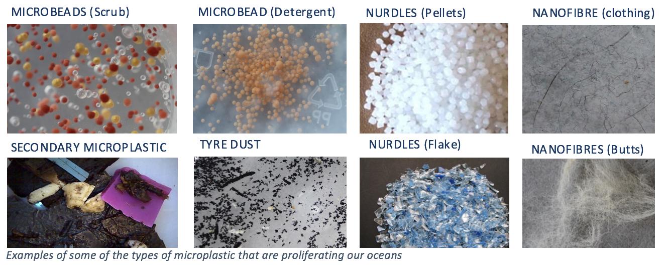 microplastics.png
