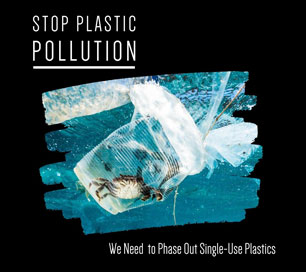 thumbnail_phase_out_single_use_plastic_blog.jpg