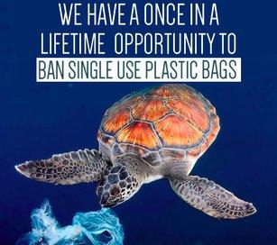 rsz_plastic_bag_ban_thumbnail.jpg