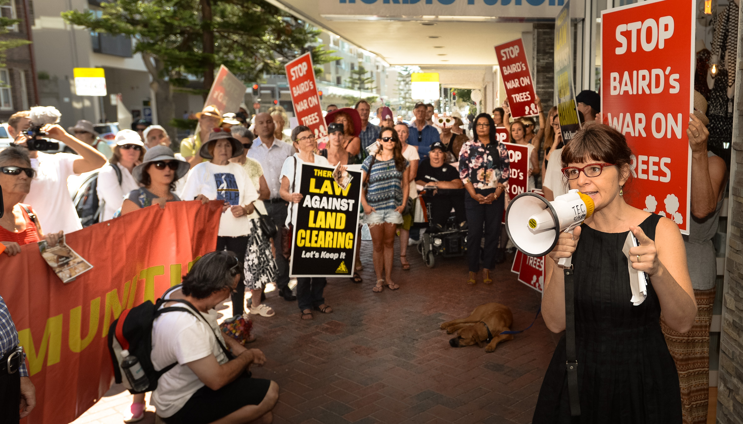 Mike_Baird_protest_(3).jpg