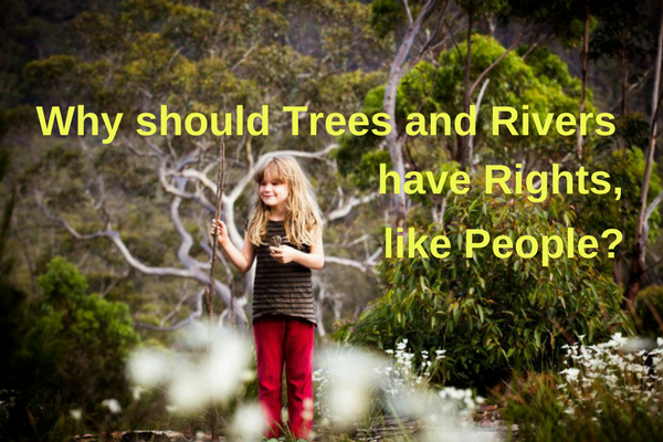 do_trees_and_rivers_bold.png
