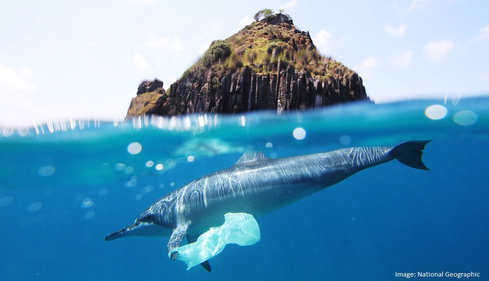 2015 greg hunt plastic pollution petition.pdf