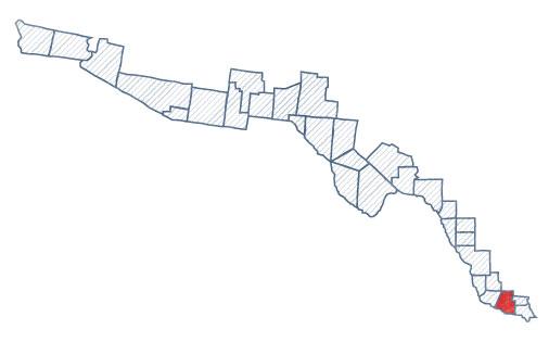map_Hidalgo_tx.jpg
