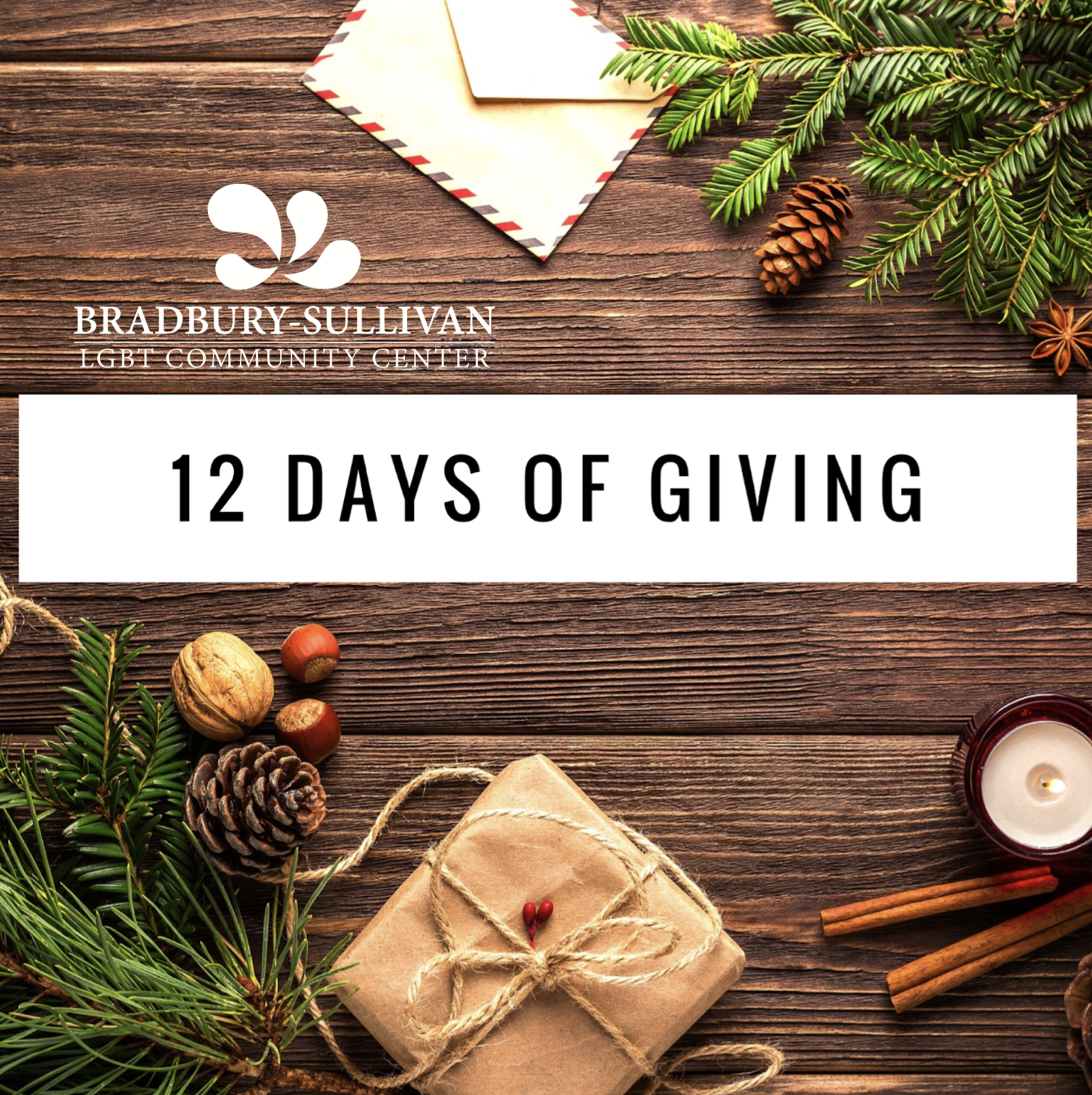 12_days_of_giving_BSC.png