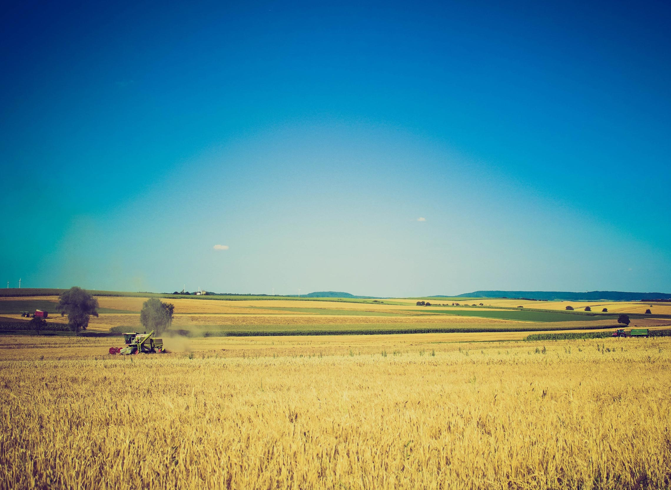 Large-Farming.jpg