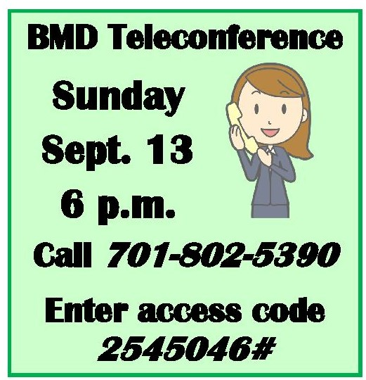bmd_teleconf-page-001.jpg
