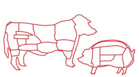 5.meat.jpg