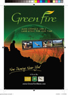 GREEN FIRE Postcard