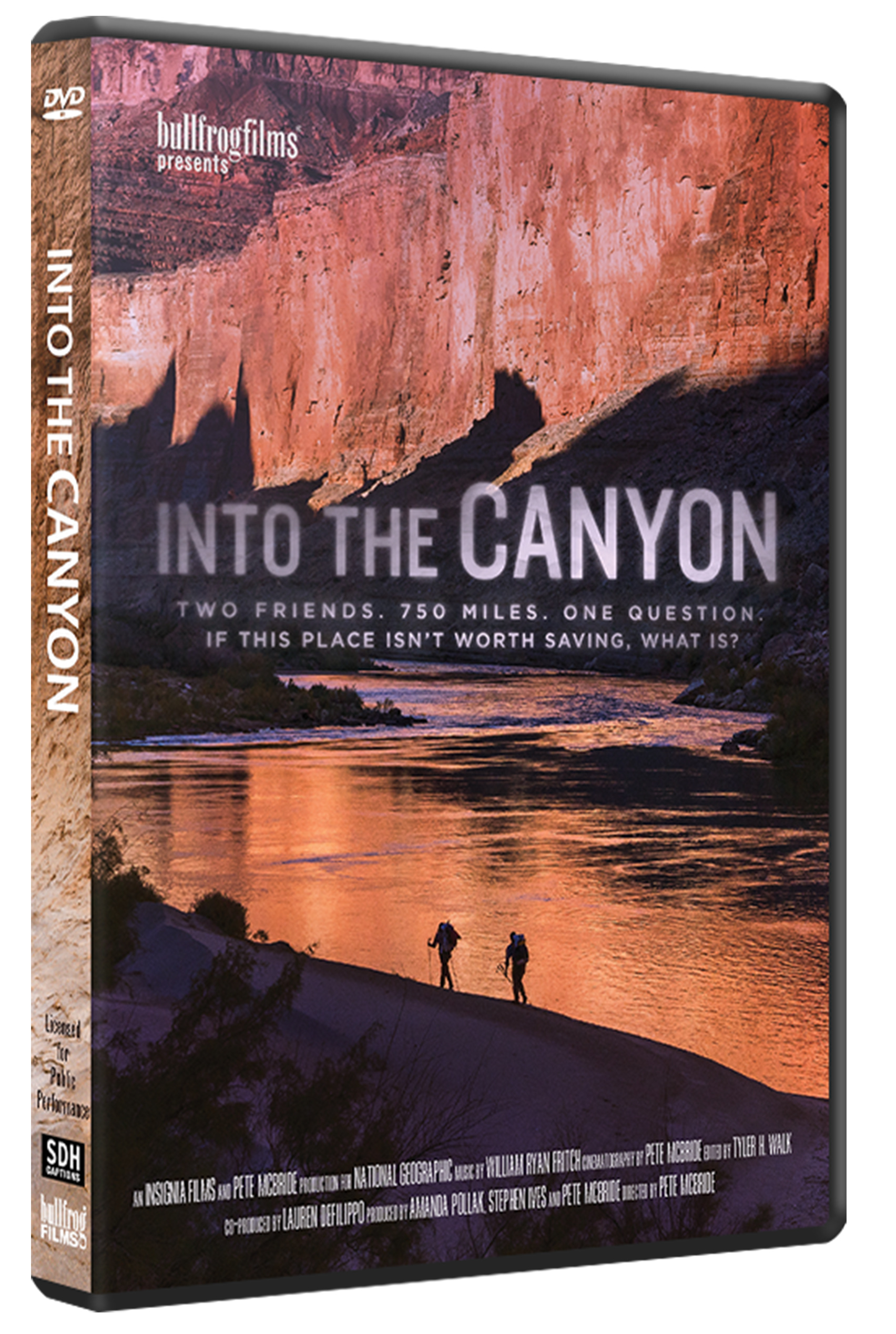 INTO THE CANYON