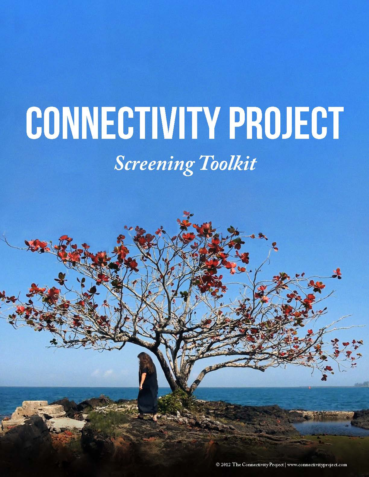 CONNECTIVITY PROJECT Screening Toolkit