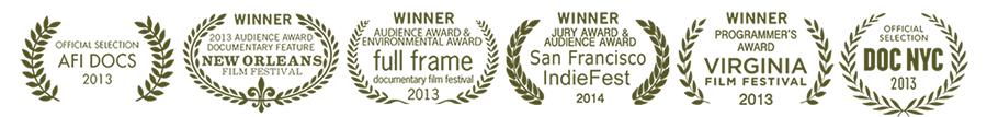 Awards and Festivals