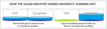 When sugarcane fields flood, it's everyone ELSE'S problem.