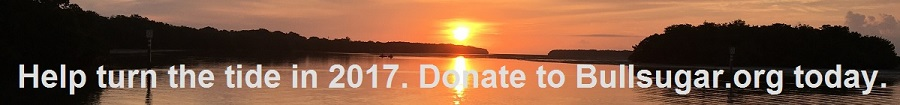 Help turn the tide in 2017 - donate today!