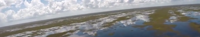 The Everglades flooded in 2017 while neighboring sugarcane fields stayed dry