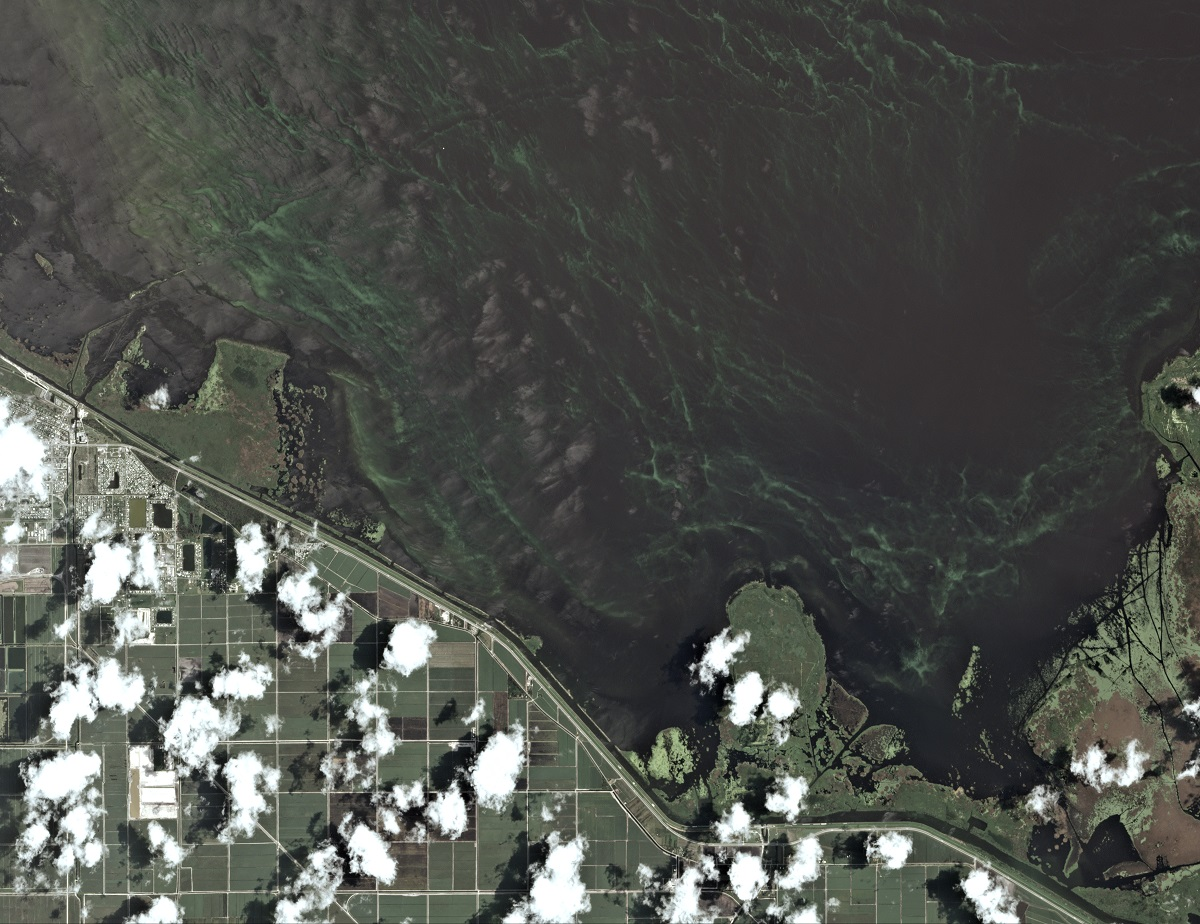 Algal bloom off Clewiston, Florida. Image courtesy of Planet Labs, Inc., produced by Earthrise Media.