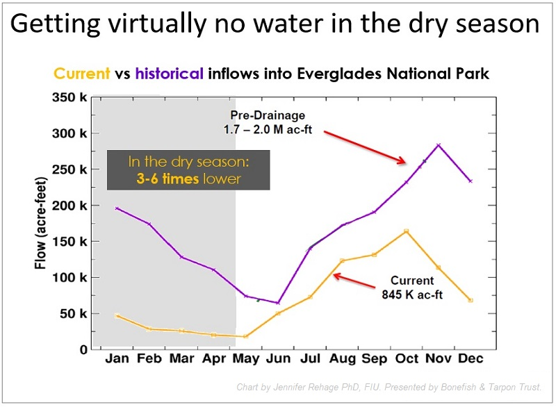 Dry season flows into Everglades National Park and Florida Bay are a fraction of historical levels