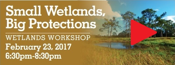 Watch the Martin County Wetlands Workshop