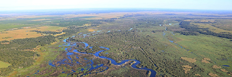 The Kissimmee River is already filtering water naturally, the way it used to