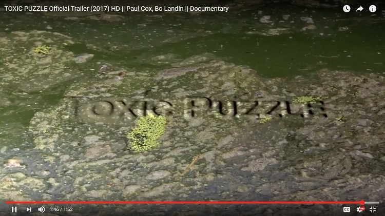 Video: Toxic Puzzle explores algae's connection to ALS