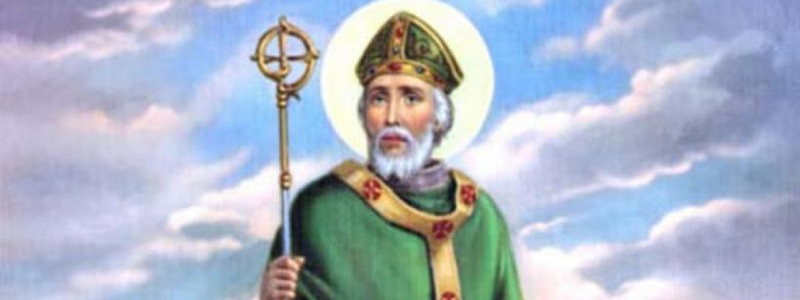 Would legendary snake elimination specialist St. Patrick have contributed to the SFWMD's python program?
